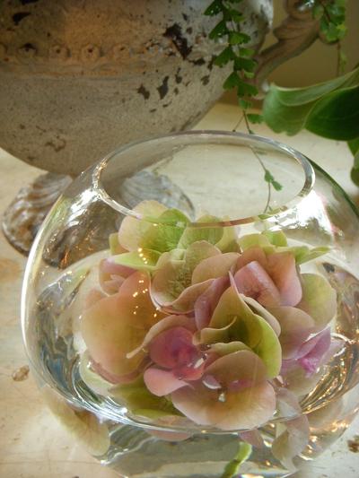 ご注文のお花たち。。。_a0229658_2152030.jpg