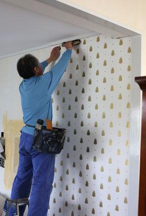 蜂柄の壁紙にしましたよ~♪_f0127281_1625691.jpg