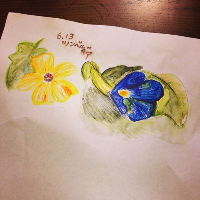 今日のお花は_f0346986_16455959.jpg