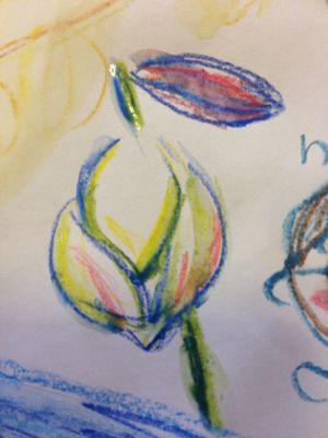 今日のお花は_f0346986_16455997.jpg