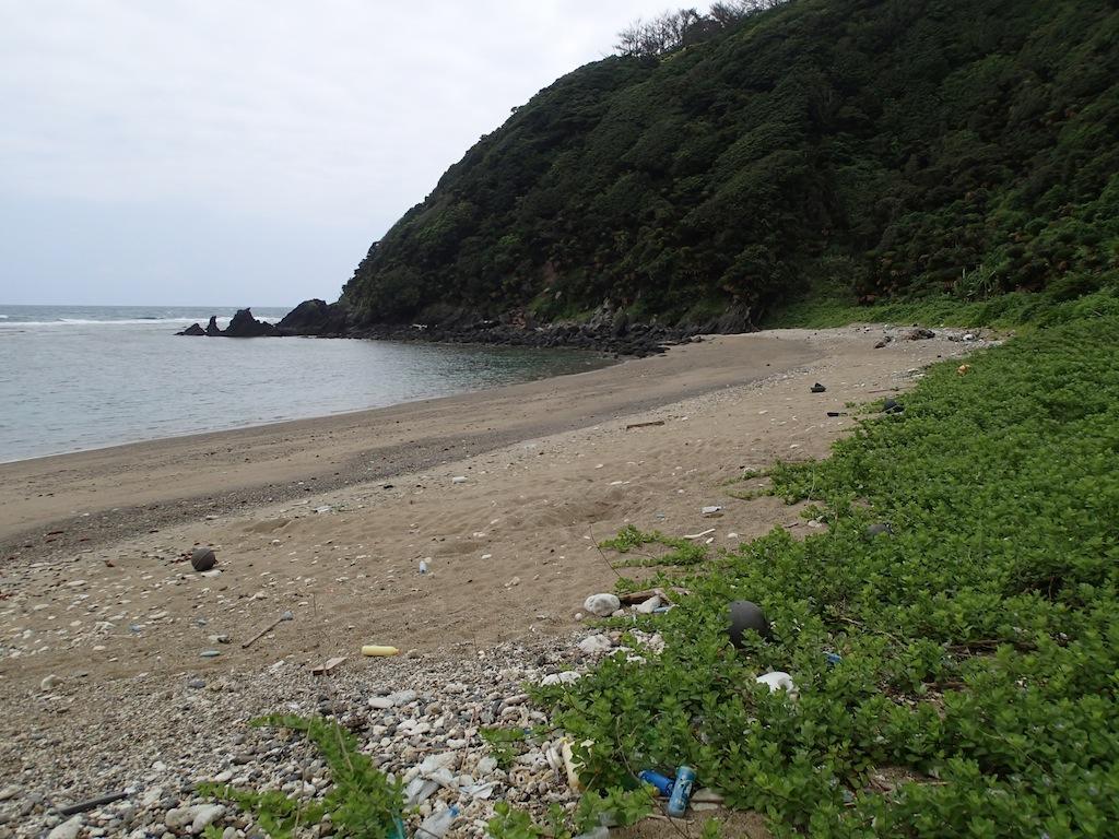 6/12 大和村ウミガメ調査_a0010095_16274682.jpg
