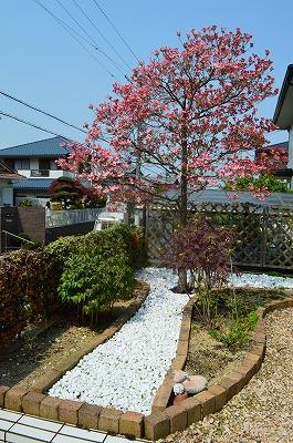 2014年6月 河内長野市 アプローチ植栽_a0233896_10465593.jpg