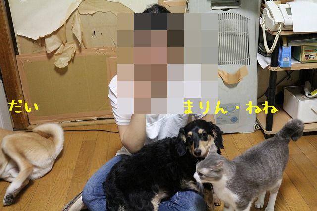 f0218911_1431771.jpg