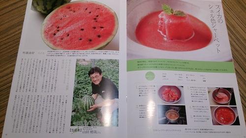 くまもと食財レシピより~スイカのシェル色シャーベット~_b0228113_13214995.jpg