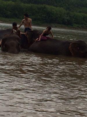 Elephant Ride !!_f0331651_021013.jpg
