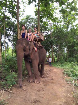 Elephant Ride !!_f0331651_02130.jpg