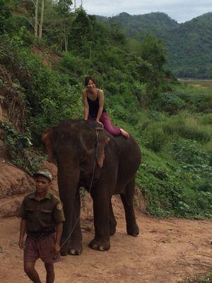 Elephant Ride !!_f0331651_021436.jpg