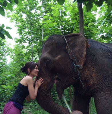 Elephant Ride !!_f0331651_021556.jpg