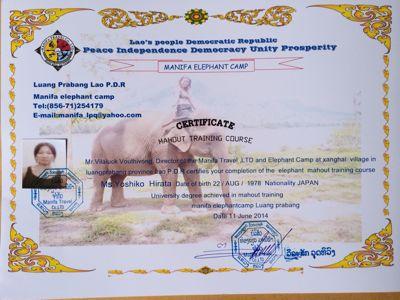 Elephant Ride !!_f0331651_021647.jpg