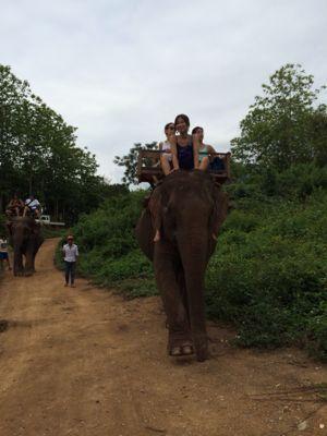 Elephant Ride !!_f0331651_02397.jpg