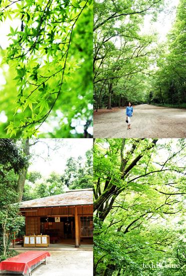 Kyoto trip Summer 2014  夏の京都旅 1_e0253364_1375173.jpg