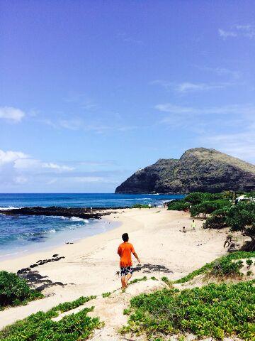 HAWAIIで元気にやってるみたい!!_a0272765_1722351.jpg