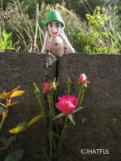 ♪ノッポさんひとり旅~2014・6月 コンナトコロニ!_a0099166_5261117.jpg