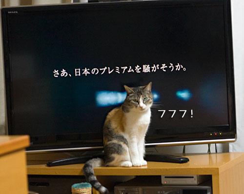 a0119470_0115812.jpg