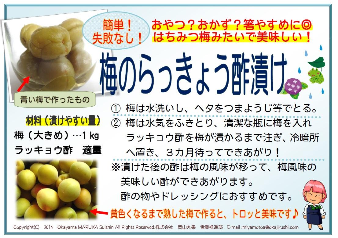 「梅のらっきょう酢漬け」_a0214374_10572820.jpg