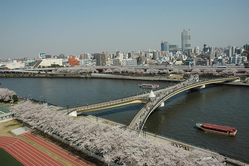 墨田区 ◇桜橋◇_f0322193_925361.jpg