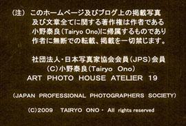 a0217029_1574128.jpg