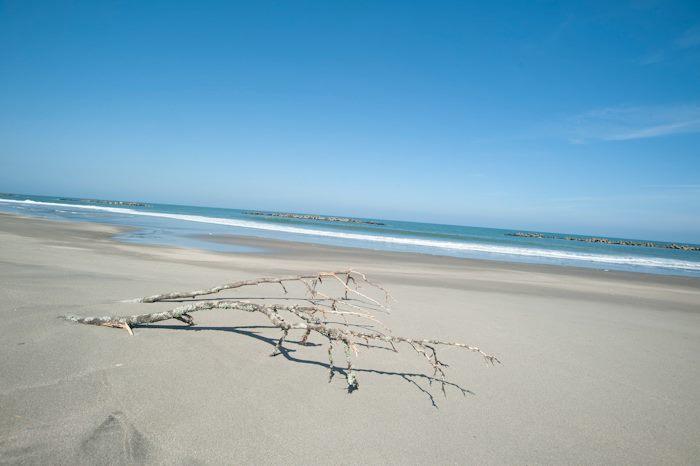 海と海岸のたまご・・・そしてスターウォーズの時計。。_f0145844_2340547.jpg