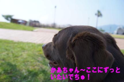 d0013645_16271062.jpg