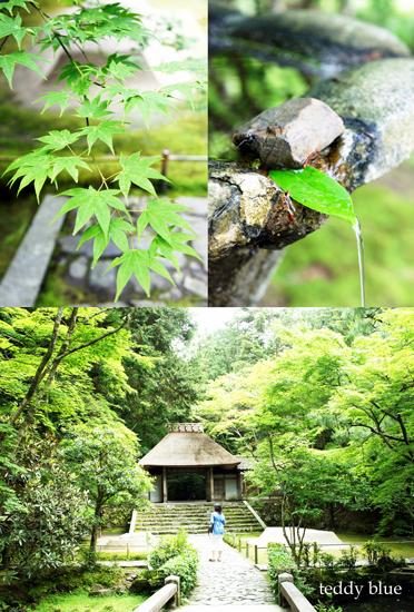 Kyoto trip Summer 2014  夏の京都旅 2 _e0253364_1615485.jpg