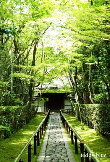 Kyoto trip Summer 2014  夏の京都旅 3 _e0253364_2355976.jpg
