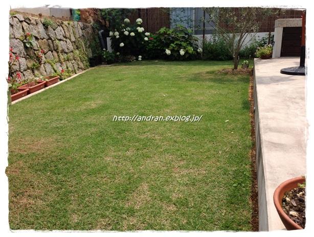 ストックヤードアプローチの芝生を考える・・・ その2_c0176271_0273025.jpg