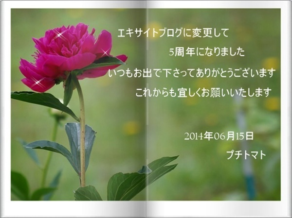 a0126676_22155933.jpg