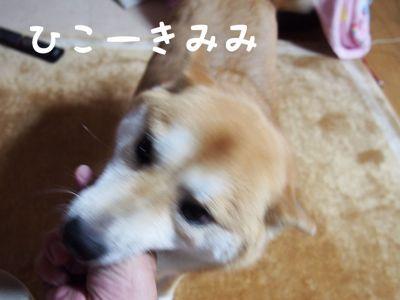f0329188_1022653.jpg