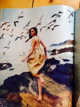 コラージュ用のファッション雑誌_a0275527_15040561.jpg