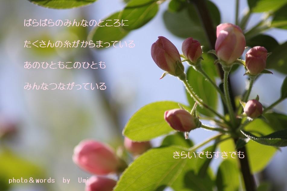 f0351844_14263983.jpg
