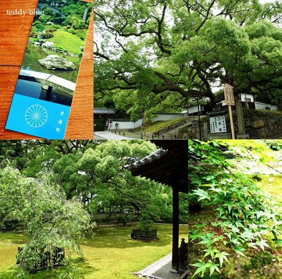 Kyoto trip Summer 2014  夏の京都旅 4_e0253364_16202953.jpg