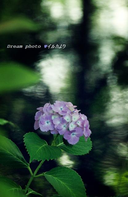 f0304384_2215195.jpg