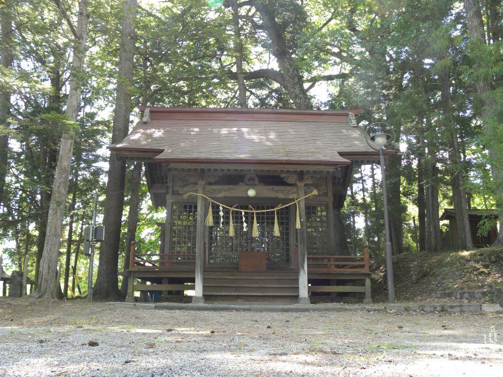 白山神社の大柏_b0329588_17183269.jpg