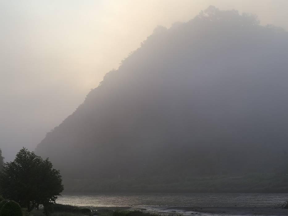 霧の日_b0074098_21405929.jpg