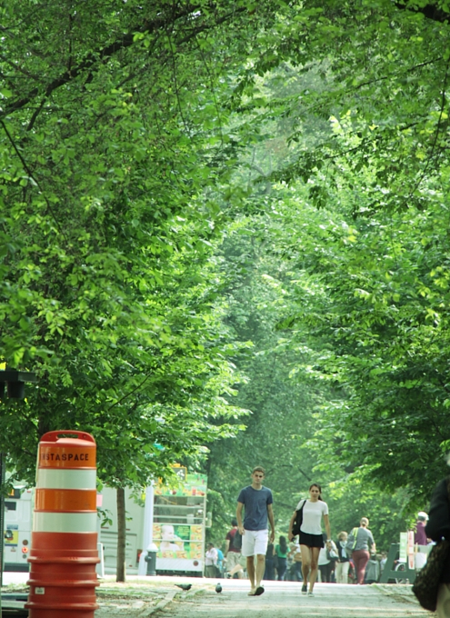 初夏のNY「ミュージアム・マイル」沿いの並木道をお散歩_b0007805_1101862.jpg