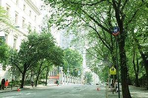 初夏のNY「ミュージアム・マイル」沿いの並木道をお散歩_b0007805_1103975.jpg