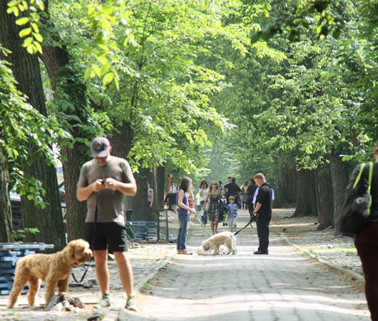 初夏のNY「ミュージアム・マイル」沿いの並木道をお散歩_b0007805_1105992.jpg