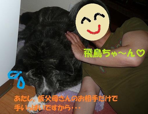 f0121712_1415575.jpg