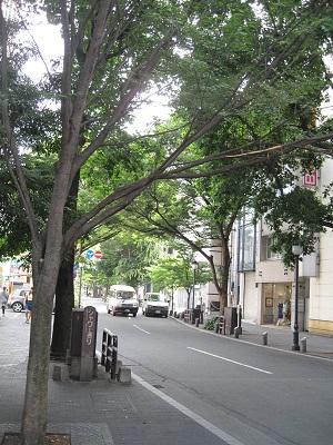 熊本中心街の色々な通り♪_b0228113_16061979.jpg