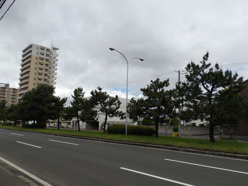 垂れこめた雲の上には夏空があるようなのだが・・・_c0025115_19281280.jpg