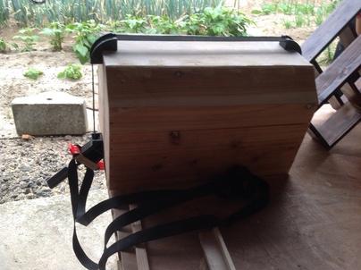 害虫駆除と木工作品作り_c0186441_23351461.jpg