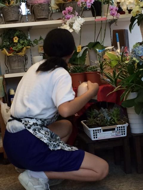 期間限定!!カワイイ店員さん ~中学生職場体験学習~_a0152665_14442075.jpg