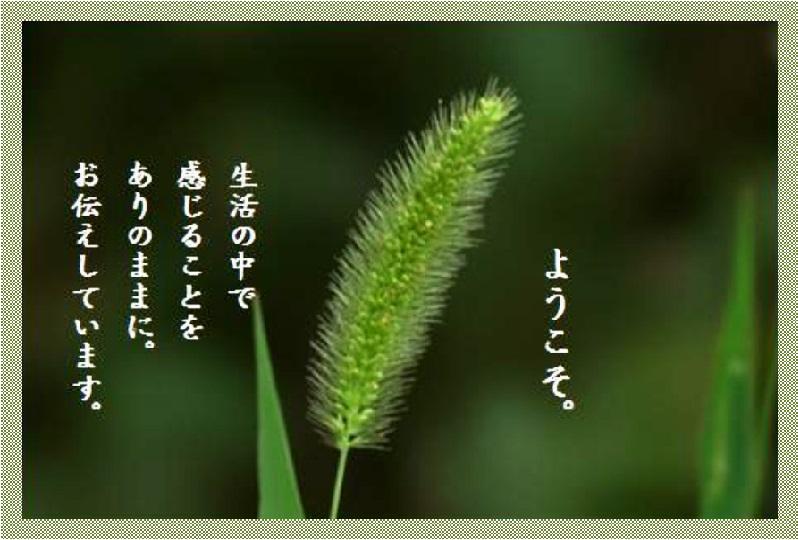 f0214467_8511663.jpg