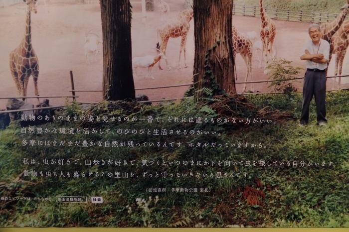 多摩動物公園_e0272869_16554535.jpg