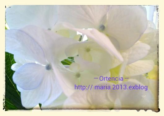 c0309870_10553912.jpg