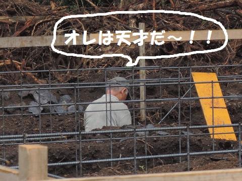 長坂町H野さん邸の現場より 7_a0211886_15284899.jpg