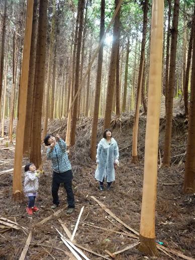 きらめ樹フィナーレ&森ヨガ 終了〜☆_e0263590_0114465.jpg