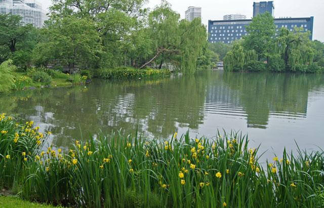中島公園_d0162994_12402930.jpg