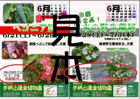 f0203094_15213522.jpg