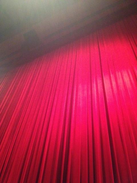 KAAT劇場の緞帳_f0144003_23120193.jpg
